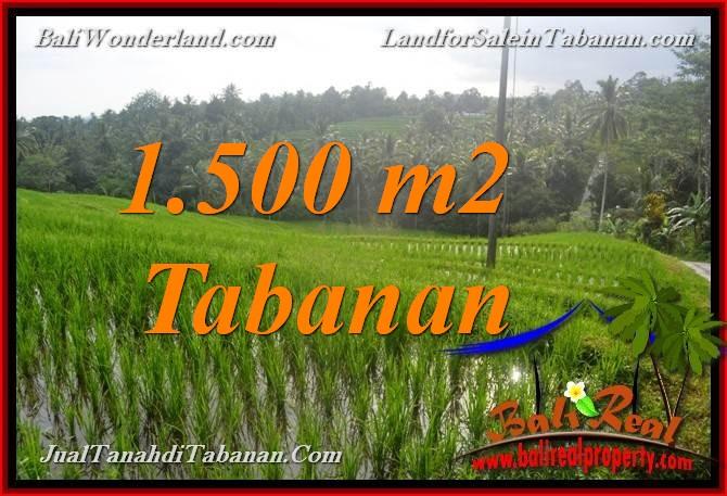 FOR SALE Affordable LAND IN Tabanan Selemadeg TJTB375