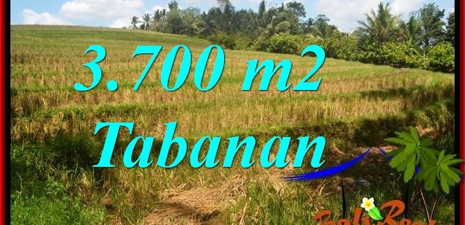 Affordable TABANAN LAND FOR SALE TJTB377
