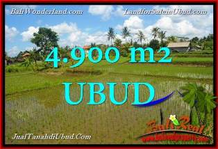 Exotic PROPERTY 4,900 m2 LAND FOR SALE IN UBUD TJUB652