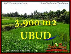 FOR SALE Beautiful PROPERTY 3,900 m2 LAND IN UBUD BALI TJUB658