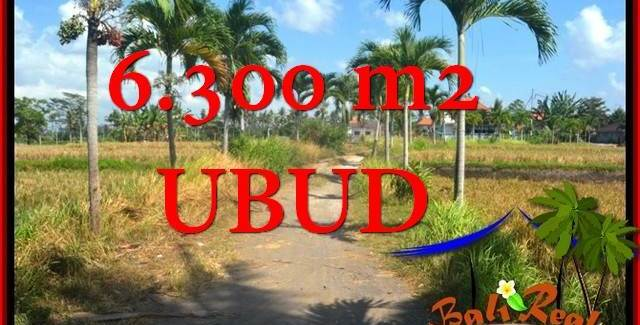Exotic 6,300 m2 LAND SALE IN Sentral Ubud BALI TJUB662