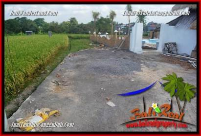 FOR SALE Magnificent PROPERTY 200 m2 LAND IN CANGGU TJCG229