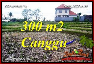 Beautiful 300 m2 LAND IN CANGGU BALI FOR SALE TJCG230