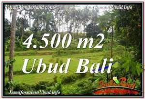 Exotic PROPERTY 4,500 m2 LAND IN SENTRAL UBUD BALI FOR SALE TJUB675