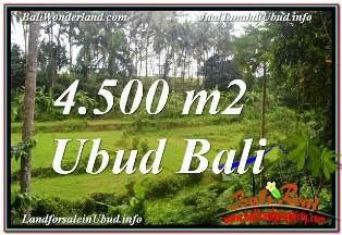 Magnificent 4,500 m2 LAND FOR SALE IN SENTRAL UBUD TJUB675