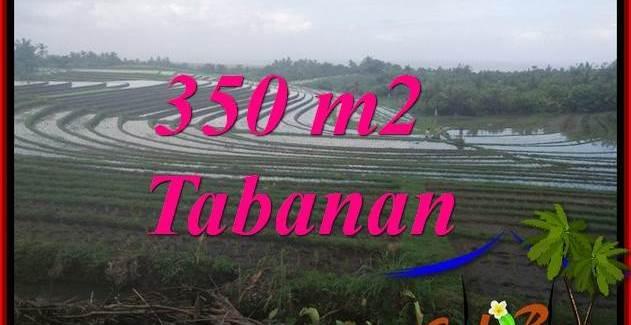 Beautiful PROPERTY LAND SALE IN TABANAN BALI TJTB386