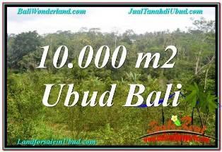 Affordable 10,500 m2 LAND IN UBUD BALI FOR SALE TJUB681