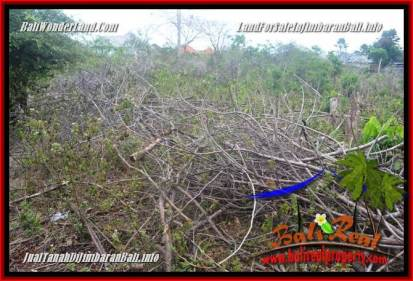 Affordable PROPERTY LAND FOR SALE IN JIMBARAN UNGASAN TJJI129
