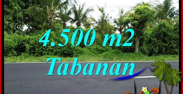 Affordable Property Land for sale in Tabanan Bali TJTB395