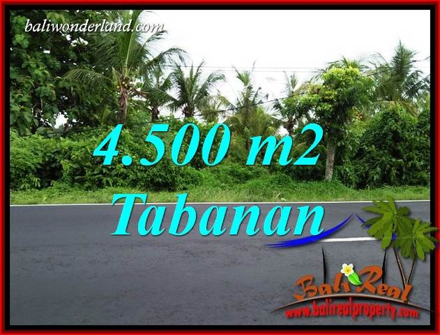 FOR sale Affordable Property Land in Tabanan Bali TJTB395
