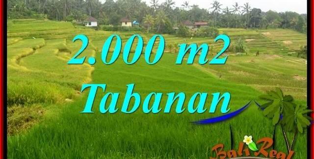 Beautiful Property 2,000 m2 Land in Tabanan Selemadeg Bali for sale TJTB396