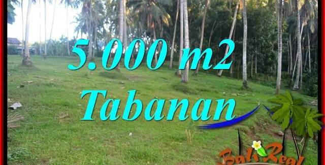 FOR sale Magnificent Property 5,000 m2 Land in Tabanan Selemadeg TJTB408