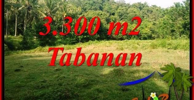 Beautiful 3,300 m2 Land in Tabanan Selemadeg for sale TJTB413