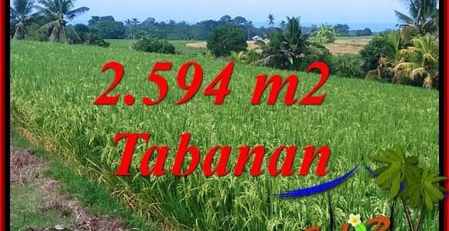 2,594 m2 Land sale in Tabanan Bali TJTB414