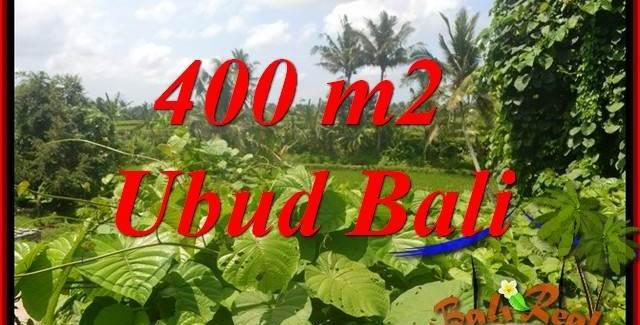 Beautiful Property in Ubud Bali Land for sale TJUB684