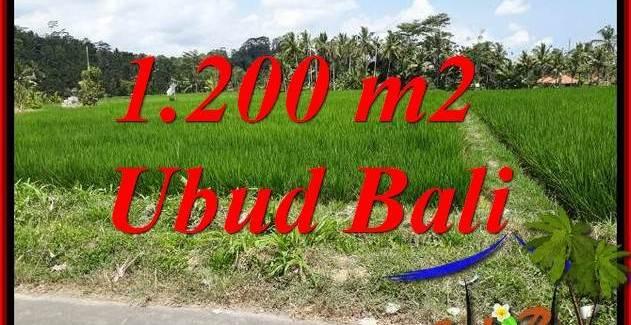 Ubud Tampak Siring Bali Land for sale TJUB694