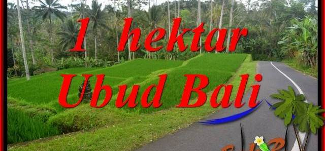 Beautiful Land sale in Ubud TJUB683
