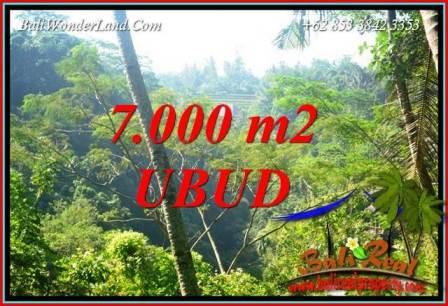 Affordable 7,000 m2 Land sale in Ubud Bali TJUB714