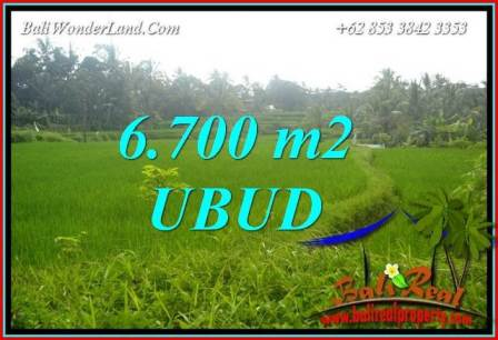 Affordable 6,700 m2 Land sale in Ubud Bali TJUB731