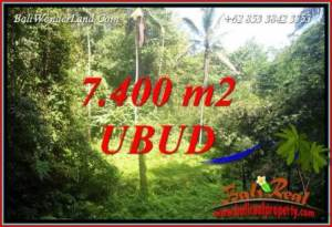 Magnificent Property 7,700 m2 Land sale in Ubud Tegalalang TJUB734
