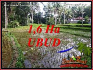 Magnificent 16,000 m2 Land sale in Ubud Bali TJUB735