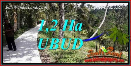 Beautiful Ubud Tegalalang Bali 12,000 m2 Land for sale TJUB740