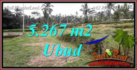 FOR sale Exotic 5,267 m2 Land in Ubud Bali TJUB743