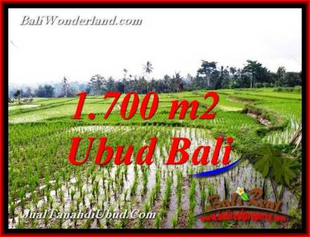 FOR SALE cheap LAND IN UBUD Bali TJUB770