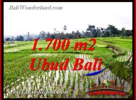 FOR SALE cheap LAND IN UBUD Bali TJUB770