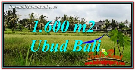 FOR SALE Magnificent PROPERTY 1,600 m2 LAND IN Ubud Tampak Siring TJUB756