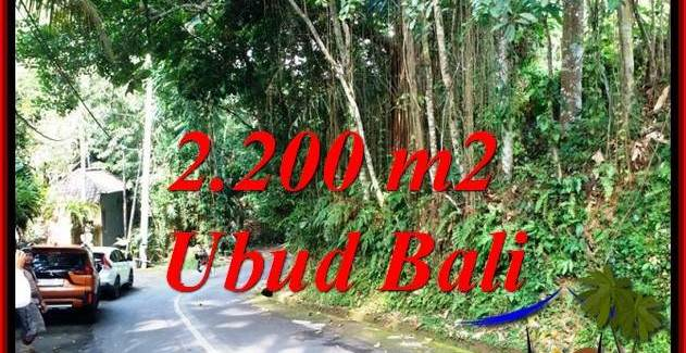 Exotic LAND SALE IN UBUD TJUB768