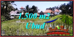Beautiful PROPERTY LAND SALE IN UBUD BALI TJUB744