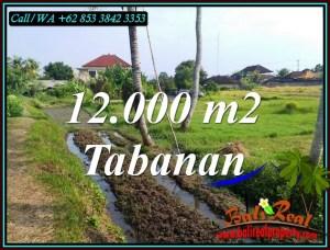 Beautiful PROPERTY LAND IN KERAMBITAN TABANAN FOR SALE TJTB502
