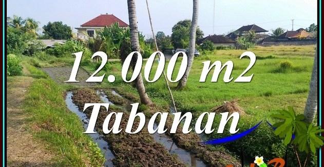 Magnificent PROPERTY LAND FOR SALE IN KERAMBITAN TABANAN TJTB502