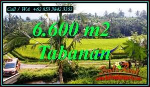 Beautiful PENEBEL TABANAN LAND FOR SALE TJTB499C