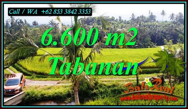 6,600 m2 LAND IN PENEBEL TABANAN BALI FOR SALE TJTB499C