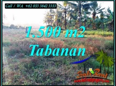 Beautiful SELEMADEG BARAT BALI 1,500 m2 LAND FOR SALE TJTB497