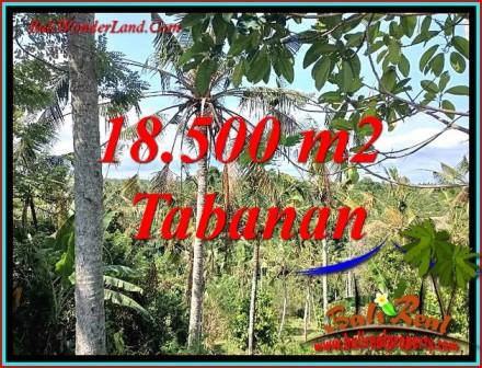 Affordable LAND IN TABANAN BALI FOR SALE TJTB487