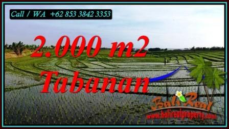 Beautiful PROPERTY 2,000 m2 LAND FOR SALE IN TABANAN TJTB493