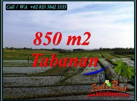 Beautiful LAND SALE IN SELEMADEG TIMUR TJTB494