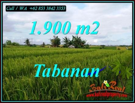 Affordable LAND SALE IN TABANAN BALI TJTB495