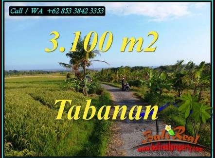 FOR SALE Magnificent LAND IN TABANAN BALI TJTB496