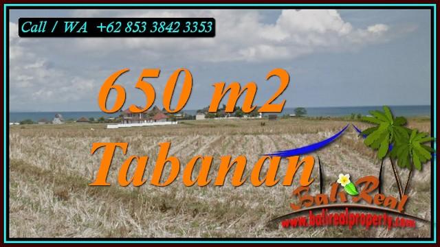 Beautiful PROPERTY SELEMADEG TABANAN LAND FOR SALE TJTB453
