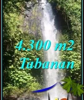 FOR SALE Exotic 4,300 m2 LAND IN SELEMADEG BARAT BALI TJTB480