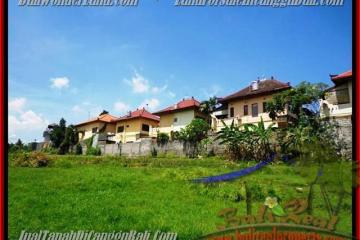 Magnificent PROPERTY LAND SALE IN Canggu Pererenan TJCG147