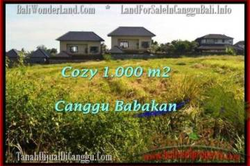 Affordable PROPERTY Canggu Batu Bolong LAND FOR SALE TJCG178