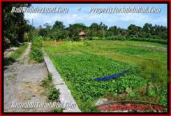 FOR SALE Magnificent LAND IN Canggu Pererenan TJCG184