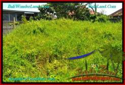 FOR SALE Beautiful PROPERTY LAND IN Canggu Pererenan BALI TJCG189