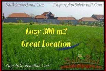 Beautiful PROPERTY 300 m2 LAND SALE IN CANGGU BALI TJCG186