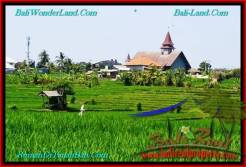 Exotic PROPERTY 500 m2 LAND FOR SALE IN CANGGU BALI TJCG192